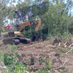 Retoman ecocidio de selva baja en las instalaciones del fraccionamiento Real Ibiza